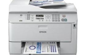 EPSWP4525DNF